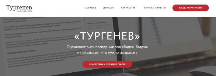turgenev.ashmanov.com
