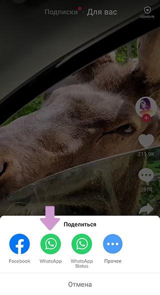 После сохранения видео на телефон, появится контекстное меню – через него можно отправить скачанное видео в WhatsApp