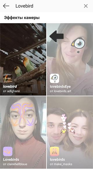 """Маска с попугаями """"Lovebird"""""""