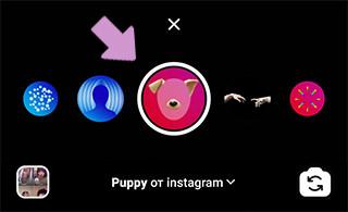 "Инстаграм-маска ""Puppy"""