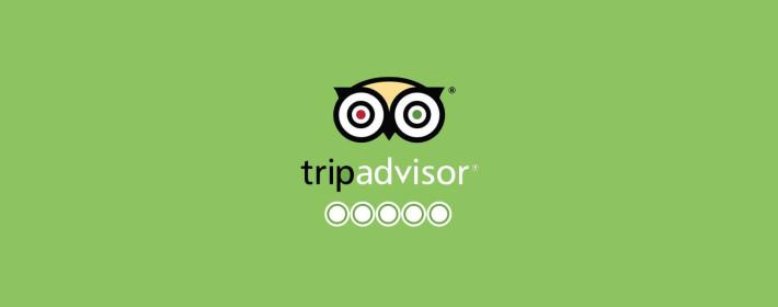 tripadvisorsupport.com - более 760 млн отзывов путешественников